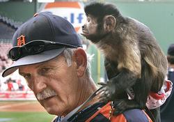 jim leyland monkey.jpg