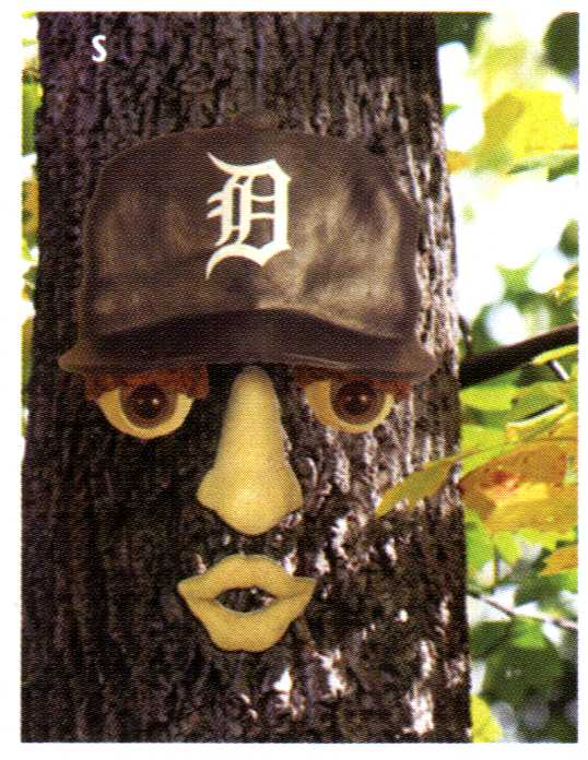 tigers forest face.jpg