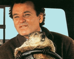 groundhog-day-bill-murray.jpg