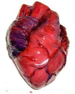 real heart.jpg