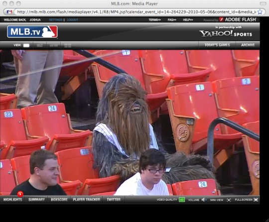 chewbacca at ballpark.jpg